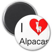 I love alpacas magnet