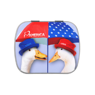 I Love America. Funny Ducks Design Candy Tins