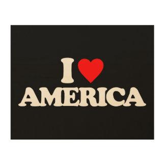 I LOVE AMERICA WOOD CANVASES