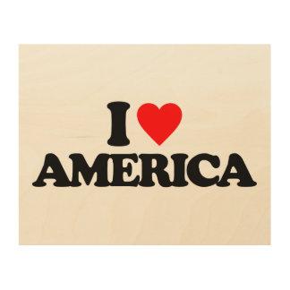 I LOVE AMERICA WOOD CANVAS