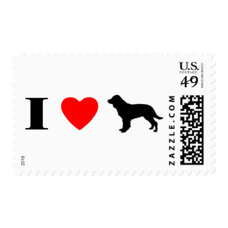 I Love American Water Spaniels Stamps