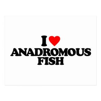 I LOVE ANADROMOUS FISH POSTCARDS