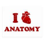 i love anatomy2 postcard