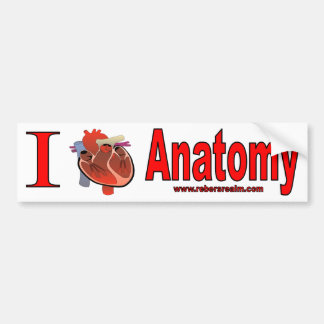 I Love Anatomy Bumper Sticker