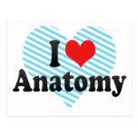 I Love Anatomy Post Card
