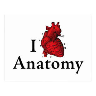 I Love Anatomy Postcards | Zazzle