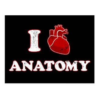 i love anatomy postcards