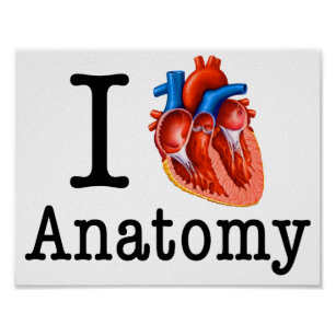 I Love Anatomy Art & Wall Décor | Zazzle