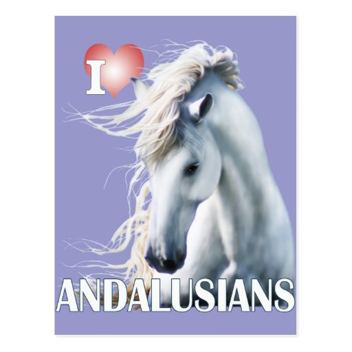 I Love Andalusians Postcards