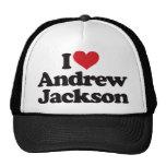 I Love Andrew Jackson Hats
