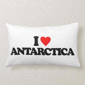I LOVE ANTARCTICA THROW PILLOWS