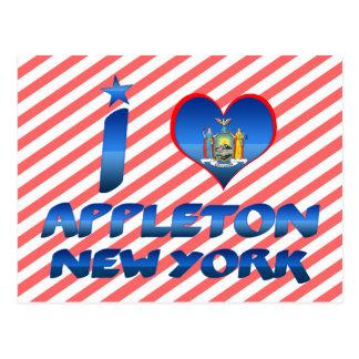 I love Appleton, New York Postcard