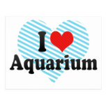 I Love Aquarium Postcard