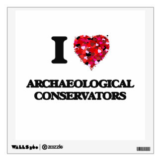 I love Archaeological Conservators Wall Skin