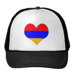 I Love Armenia Hats