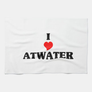 I love Atwater Kitchen Towel