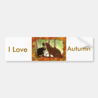 I love Autumn Bumper Sticker