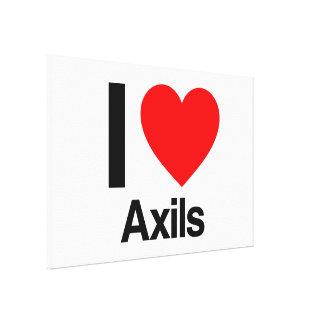 i love axils canvas print