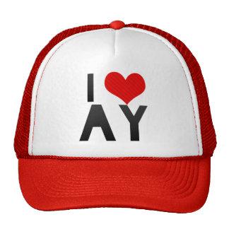 I Love AY Trucker Hat