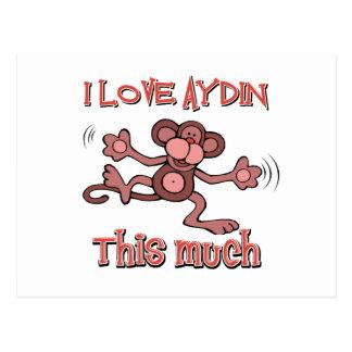 I love AYDIN this much Postcard