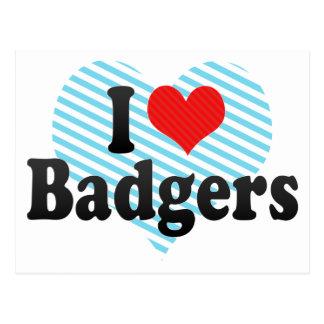 I Love Badgers Postcard