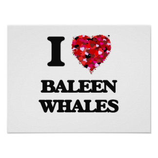 I love Baleen Whales Poster