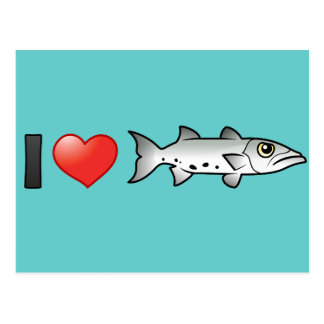 I Love Barracuda Post Cards