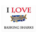 I Love Basking Sharks Postcard