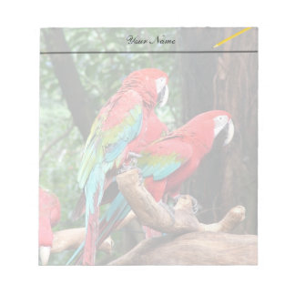 I love beatiful birds!  red and blue parrots notepad