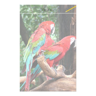 I love beatiful birds!  red and blue parrots stationery