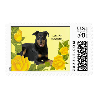 I Love Beauceron & Yellow Roses Custom USA Postage