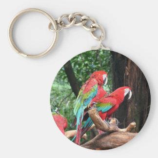 I love beautiful birds! key chain