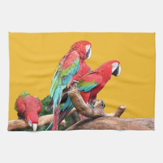 I love beautiful birds! red and blue parrots. kitchen towel