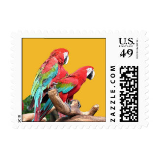 I love beautiful birds! red and blue parrots. postage stamp