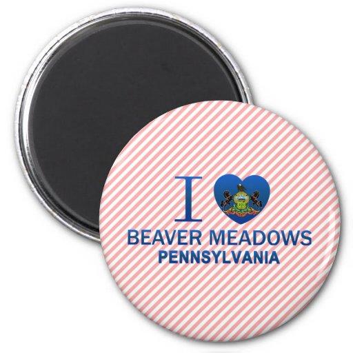 I Love Beaver Meadows, PA Refrigerator Magnets