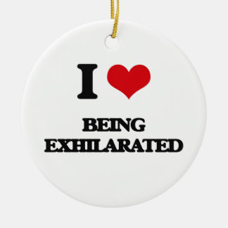 I love Being Exhilarated Double-Sided Ceramic Round Christmas Ornament