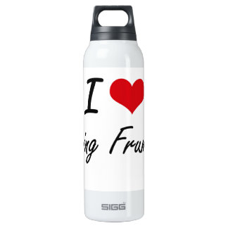 I Love Being Frumpy Artistic Design 16 Oz Insulated SIGG Thermos Water Bottle