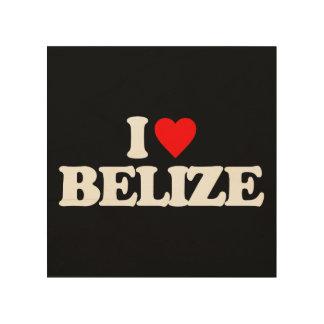 I LOVE BELIZE WOOD WALL ART