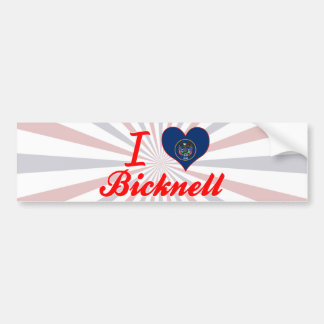 I Love Bicknell, Utah Bumper Stickers
