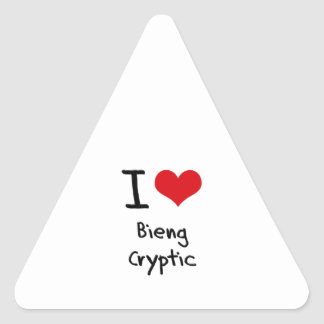 I love Bieng Cryptic Triangle Sticker
