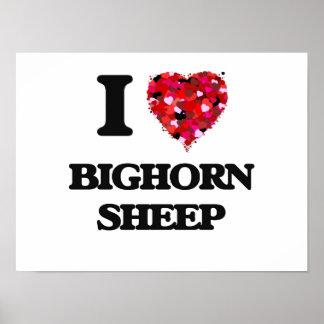 I love Bighorn Sheep Poster