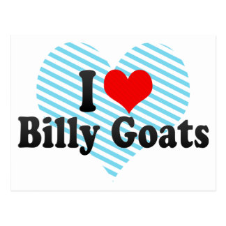 I Love Billy Goats Postcard