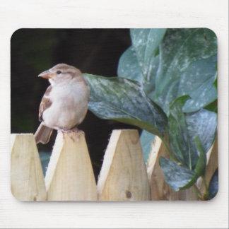 I love Birds mousepad