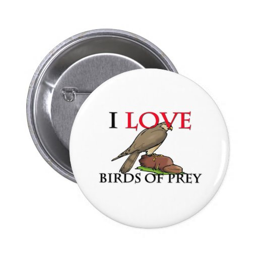 I Love Birds Of Prey Pins