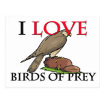 I Love Birds Of Prey Postcard