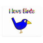 I love Birds Postcard