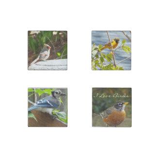 I love Birds stone magnet set Stone Magnet