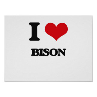I love Bison Posters