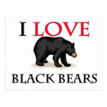 I Love Black Bears Postcard