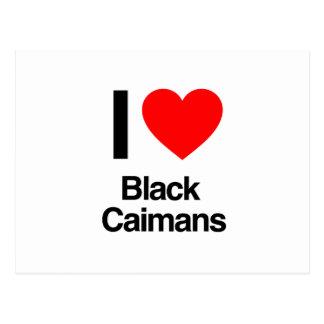 i love black caimans postcard